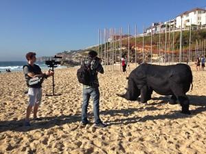 paul rom rhino